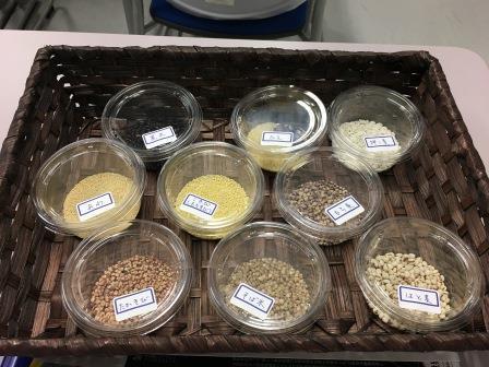 人間健康科食物栄養専攻で『雑穀』に関する講演会を開催しました