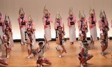 8月14日(土)に四国大学連が徳島市「選抜阿波おどり」に初出演します